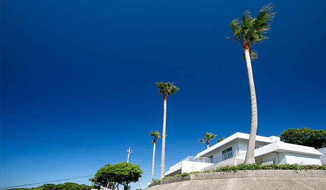 ゆったりとくつろげるプライベートハウス。どこまでも続く白い砂浜と目の覚めるようなエメラルドグリーンの海が美しいことで知られる角島。貸別荘ならではの上質なひとときをお過ごしください。
